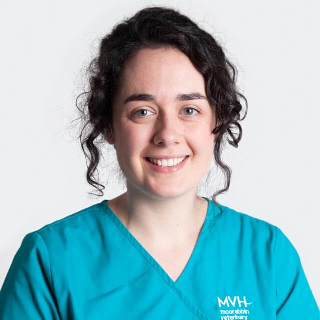 Dr Aoibheann Clarke - Veterinarian at Moorabbin Veterinary Hospital in Hampton East, VIC 3188