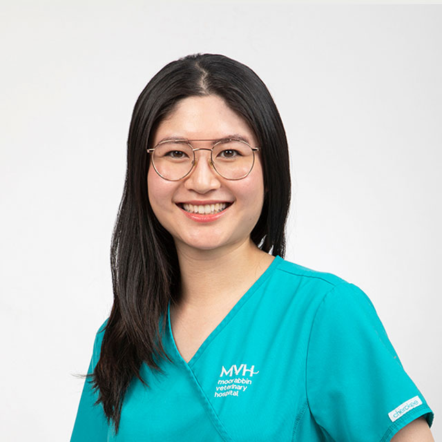 Dr Angel Chu - Veterinarian at Moorabbin Veterinary Hospital